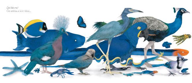 Le Grand Défilé des animaux, de Julie Colombet.