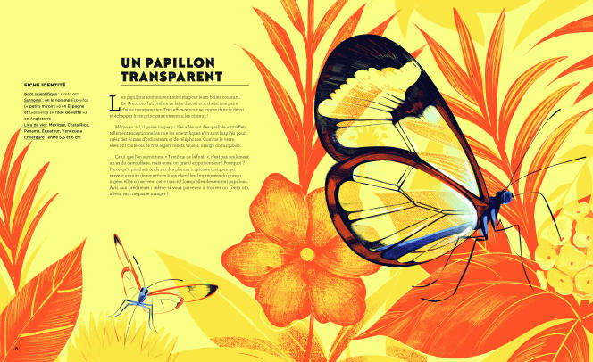 Incroyables Créatures. Les grands défis de la nature, de Mily Cabrol et Léonard Dupond.