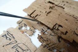 Ce papyrus est un« cahier d'exercice » d'étudiants scribes, en écriture hiératique.