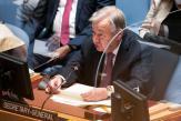 L'ONU exhorte à transformer les systèmes alimentaires pour cesser «la guerre livrée à notre planète»