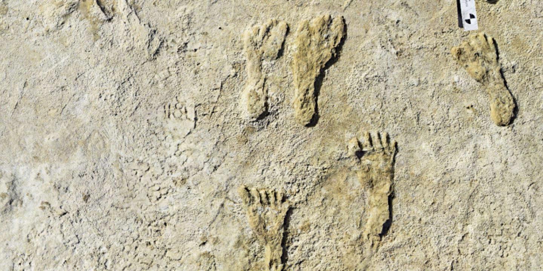 Des empreintes humaines vieilles de 23 000 ans réécrivent l'histoire du peuplement de l'Amérique