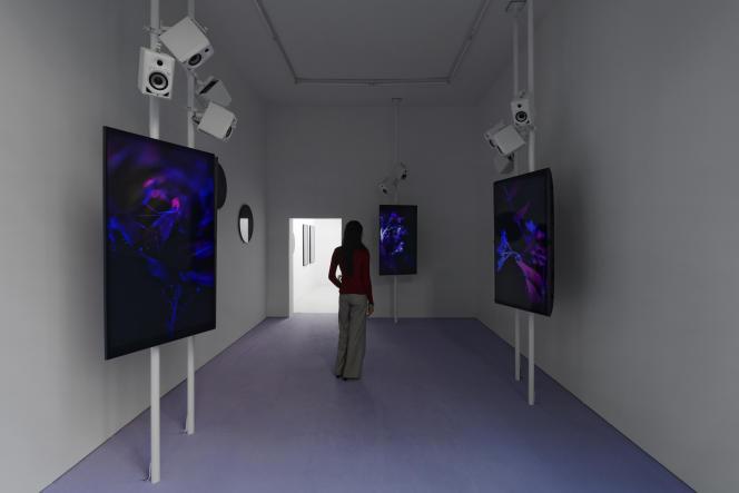 Vue de l'exposition d'Angelica Mesiti,«Over The Air and Underground», à la galerie Allen, à Paris, le 3 septembre 2021.