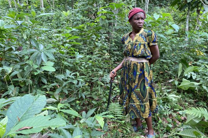 Pangrâce Ndzana, 54ans, dans son champ de quatre hectares de cacao abandonné, à Nkengué, en août 2021.