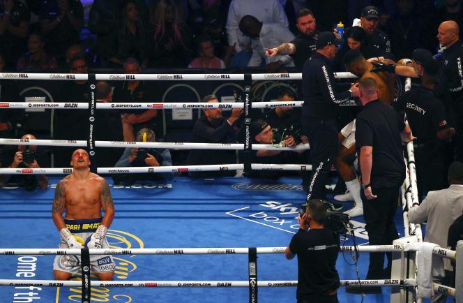 L'Ukrainien Oleksandr Usyk, victorieux du Britannique Anthony Joshua, sur le ring du Tottenham Hotspur Stadium à Londres, samedi 26 septembre.