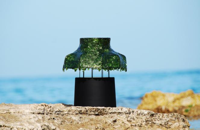 «Marine Light», lampe du designer Nir Meiri réalisée à base d'algues vertes.