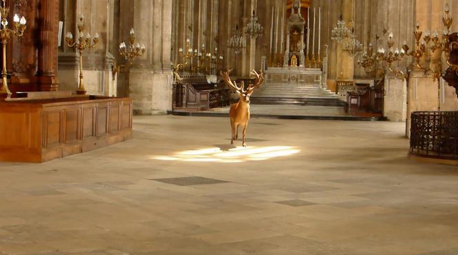 Captation d'une performance de l'artiste Leonora Hamill, qui avait lâché un cerf vivant dans l'église, en2014. Après l'art, l'église se met au parfum…
