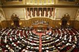 Dans l'hémicycle du Sénat, à Paris, en 2008.