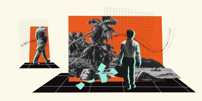 Collage Pandora papers Sources photo : unsplash, freepik