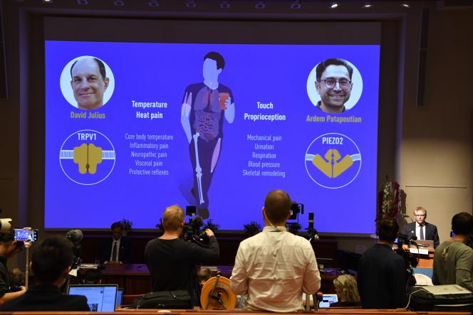 Presentazione del lavoro di David Julius e Erdem Patbutian, 4 ottobre 2021 a Stoccolma.