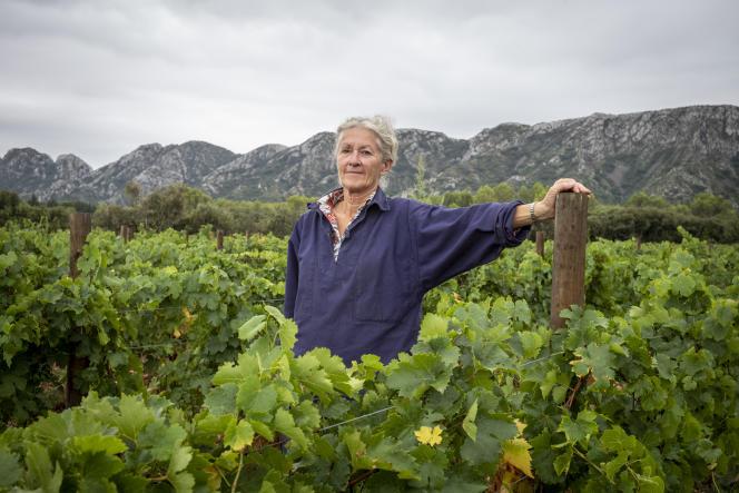 Dominique Hauvette dans ses vignes, au pied du massif des Alpilles, à Saint-Rémy-de-Provence (Bouches-du-Rhône), le 16 septembre 2021.