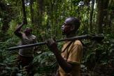 Au Gabon, les chasseurs de brousse sous surveillance