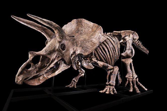Le dinosaure Big John.