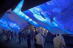 Un écran géant onduléaccueilleles visiteurs du ConsumerElectronicsShow(CES)à Las Vegas(Nevada), en janvier2020.