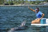 «Aucun bassin, aussi grand soit-il, ne pourra offrir des conditions de vie décentes aux dauphins»