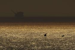 Une plate-forme pétrolière offshore alors que l'incendie d'Alisal sévit, près de Goleta, en Californie, le 12 octobre 2021.