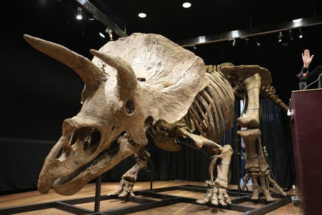 Le squelette de « Big John » est complet à 60 %.