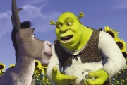 Avec les voix d'Alain Chabat (Shrek), Med Hondo (l'âne), Barbara Tissier (la princesse), Philippe Catoire (Lord Farquaad).
