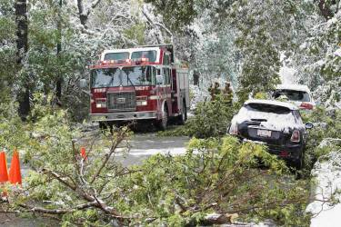 Calgary firefighters move trees that damaged cars, blocked roads and fell on power lines during a summer snow storm in Calgary, Alberta, September 10, 2014. Roads are blocked with fallen trees, over 30,000 people are without power and the city has opened it's emergency operation centre in the city according to local media reports. REUTERS/Todd Korol  (CANADA - Tags: ENVIRONMENT SOCIETY)
